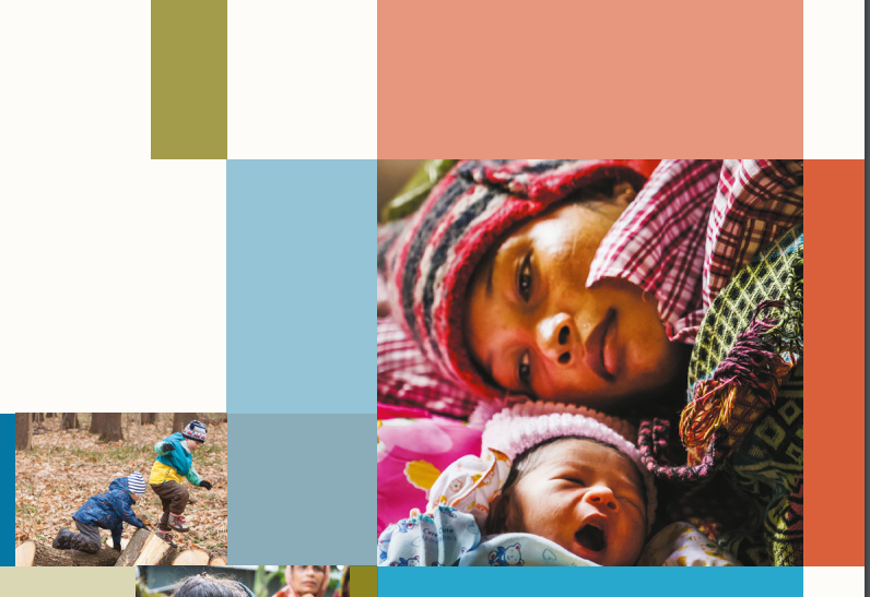 Programme Reporting Standards for Sexual, Reproductive, Maternal, Newborn, Child and Adolescent Health (brief 2)